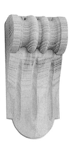 Möbelschnecke Tanne 55x125mm