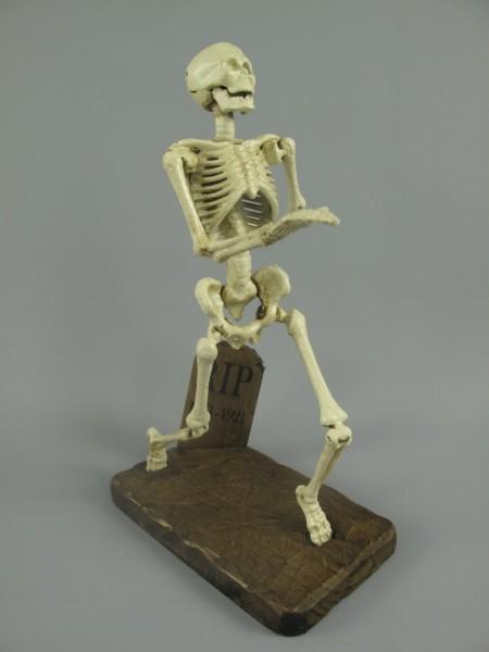 Skelett Eisen H.29x18cm